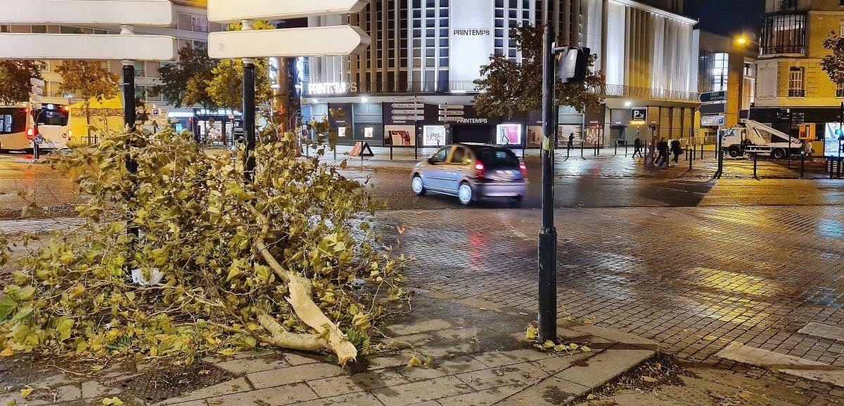 Seine-Maritime. Tempête Aurore: des rafales jusqu'à 175 km/h et des dégâts