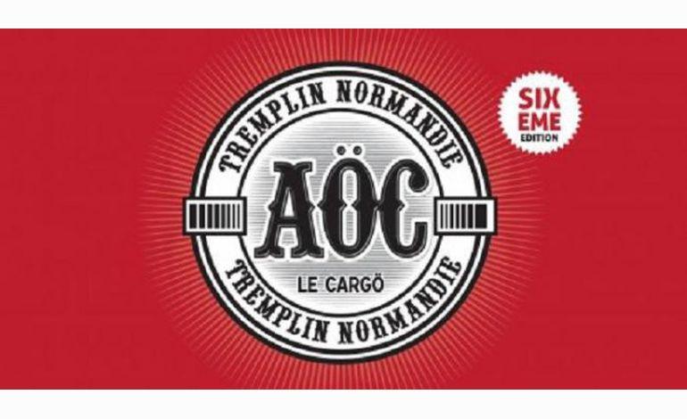 Musique : les sélectionnés pour le Tremplin AÖC 2012 sont...