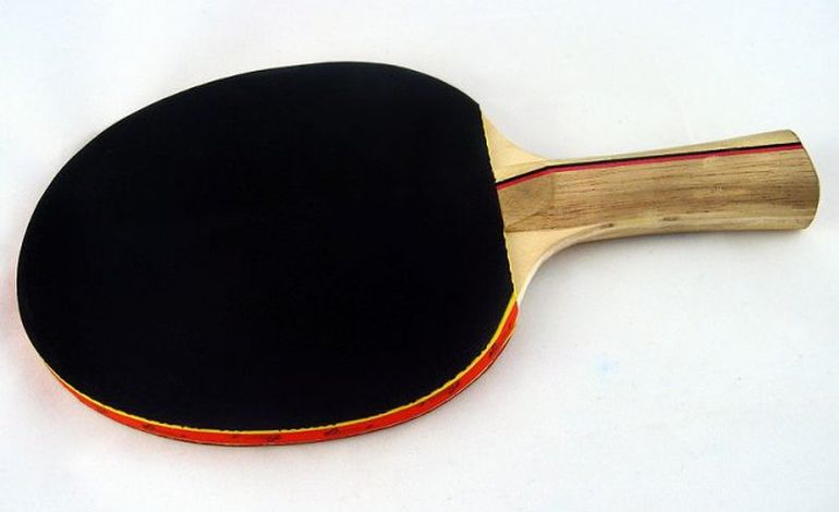 Tennis de Table/Pro A : la Bayard joue le maintien