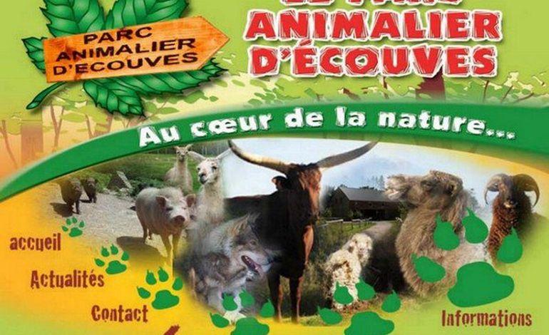 Le parc animalier d'Ecouves, au coeur de la nature