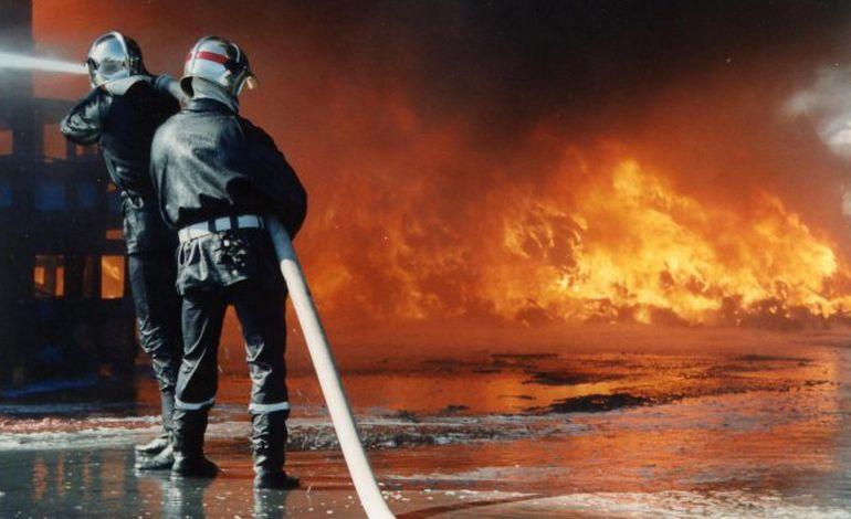 Départ de feu dans un bâtiment agricole à Barenton : 160 veaux évacués