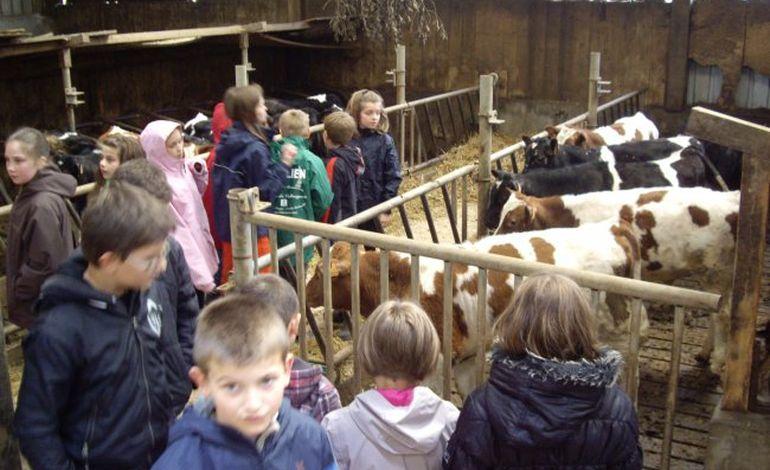 2000 écoliers ornais invités à la ferme