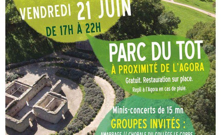 1ère fête de la musique acoustique dans le parc du Tôt