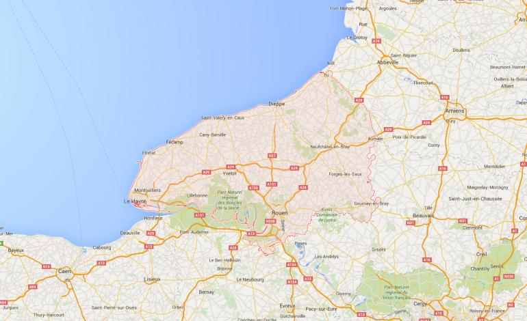 Arthur le Pélican, retrouvé en Normandie plus d'un an après sa fugue