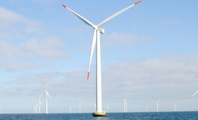 Normandie : huit associations déposent un recours contre le parc éolien en mer de Courseulles
