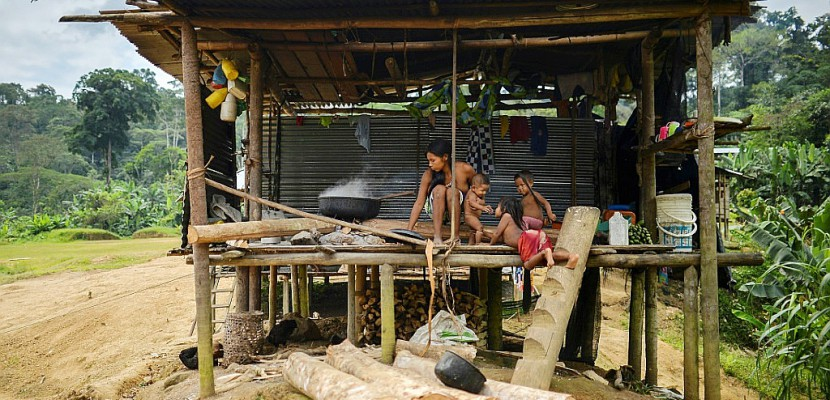 Violence, faim et peur dans les régions isolées de Colombie