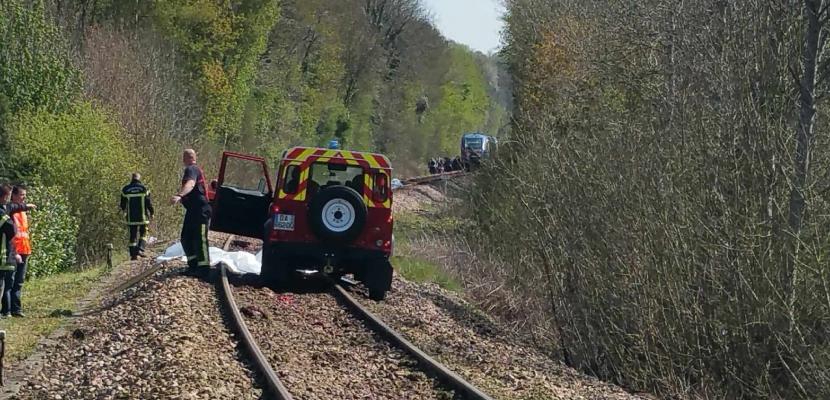 Un train avec 39 passagers à bord percute des bovins dans la Manche