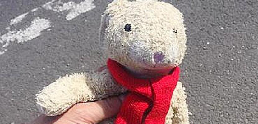 Avis de recherche pour un doudou perdu sur l'A13 : un Rouennais fait le buzz