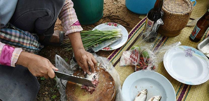 Les médecins thaïs combattent un plat de poisson cancérigène