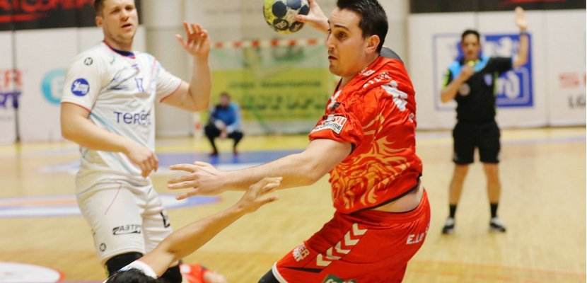 Handball (Proligue, J23) : de vrais Vikings face à Billère !