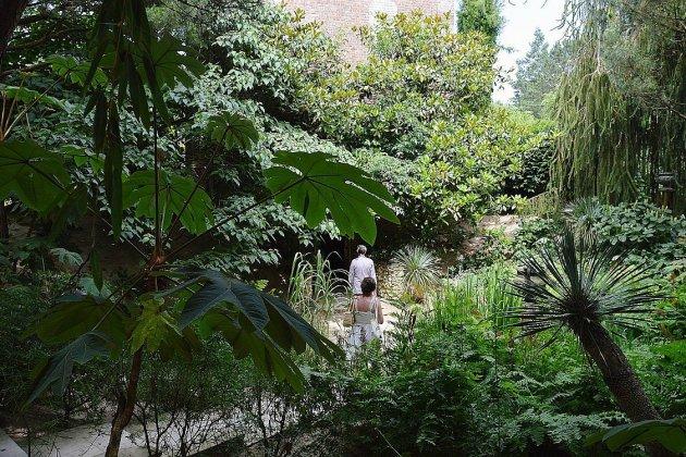 Jardins Agapanthe de Grigneuseville: nocturnes pour voir la nature autrement