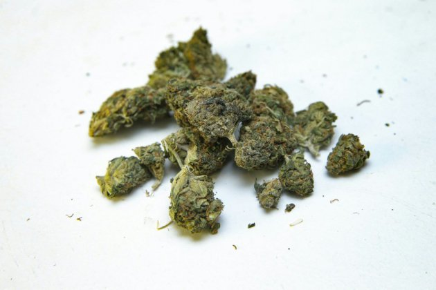 Le cannabis thérapeutique va être autorisé au Royaume-Uni
