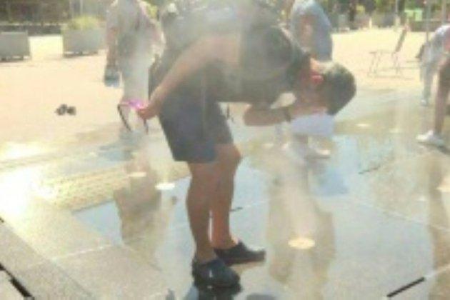 Bitume fondu et chaussons pour chien: l'Europe étouffe sous la chaleur
