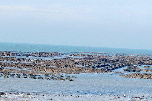 Comptage des pêcheurs à pied en Normandie pendant les grandes marées