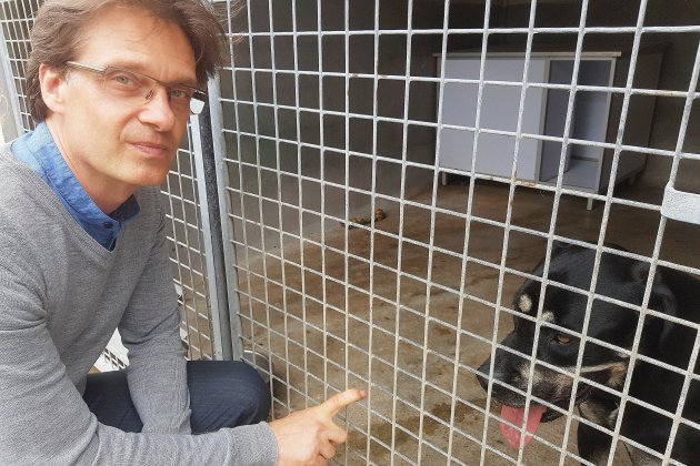 A Rouen,moins d'abandons d'animaux grâce à un nouveau choix de la SNPA ?