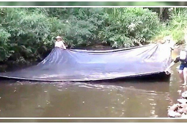 VIDÉO - Une technique de pêche incroyable