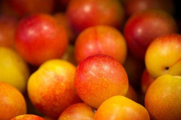 A la Bastille, les prunes se font solidaires des producteurs