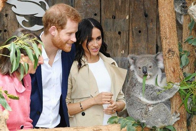 A Sydney, Harry et Meghan reçoivent des cadeaux pour bébé et rencontrent des koalas
