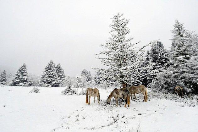 Première offensive de l'hiver sur le Massif central, orages dans le Sud