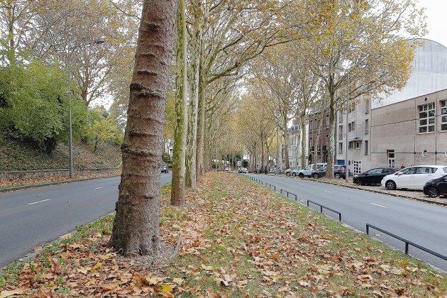 Rouen: deux arrêts supplémentaires pour la future ligne T4