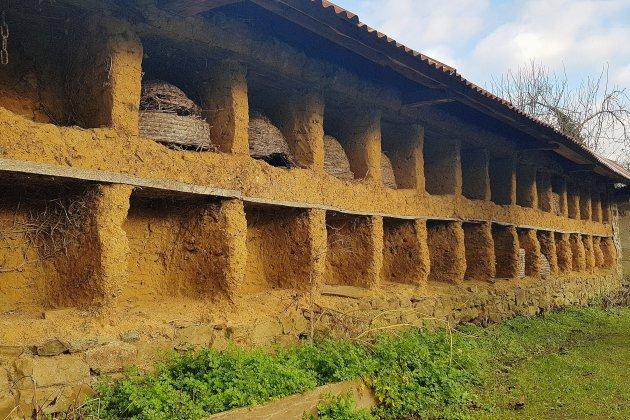 L'un des plus grands mur à abeilles de France restauré dans la Manche