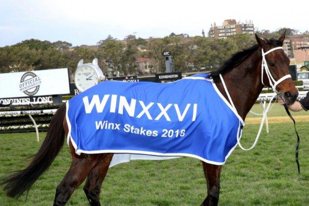 """Un journal proclame un cheval """"Australien de l'année"""""""