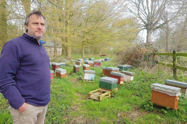 Un apiculteur dénonce le vol de plusieurs ruches près de Goderville