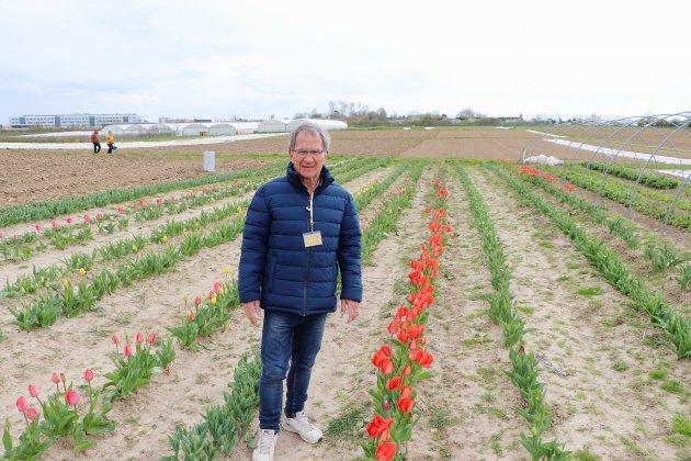 Opération Tulipes contre le cancer près du Havre