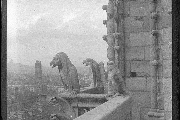 Les archives de la Manche diffusent des photos inédites deNotre-Dame de Paris