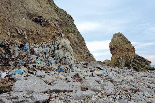 Décharge de Dollemard (Havre): enlever les déchets ou les cacher?