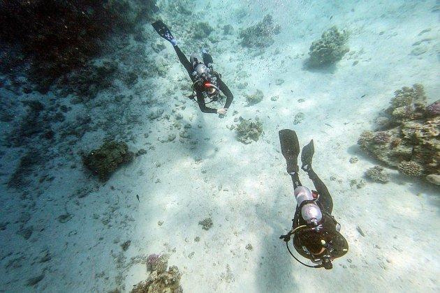 Dans les eaux bleues de la mer Rouge, le regain du tourisme menace les coraux