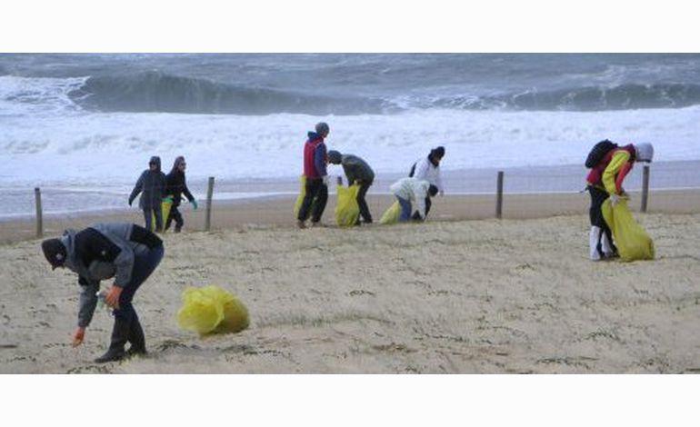 7 plages du Calvados reçoivent le Pavillon Bleu 2012
