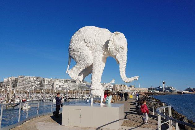 L'éléphant de Mérelle ne reviendra pas au Havre