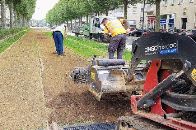 Tramway de Caen: les paysagistes sèment le gazon trois fois