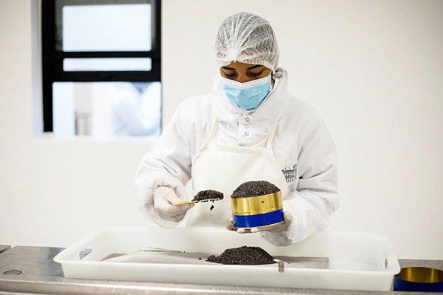 Grâce à Madagascar, le caviar peut aussi être africain