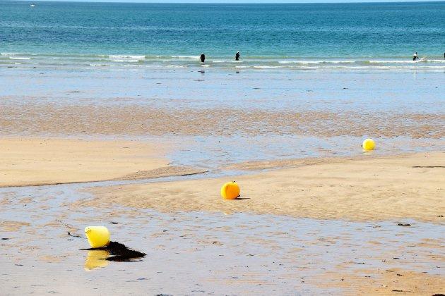 La pêche à pied interdite de Ouistreham à Courseulles-sur-Mer