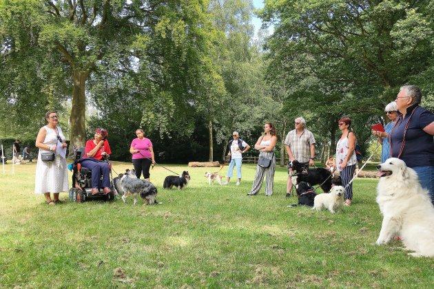 Au Havre, un parc dédié aux chiens