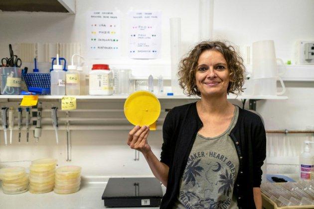 """Audrey Dussutour, chercheuse-vedette sur le """"blob"""", au service de la science fondamentale"""