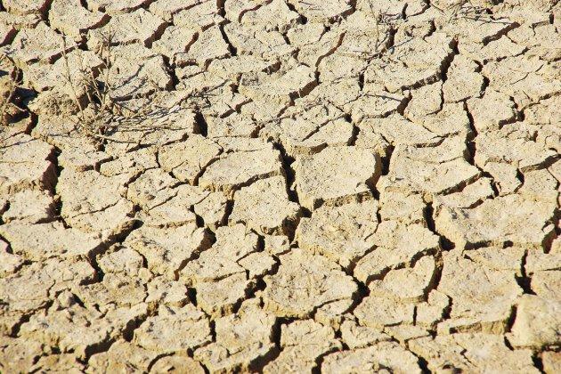 Alerte sécheresse : restrictions d'eau dans l'est du Calvados