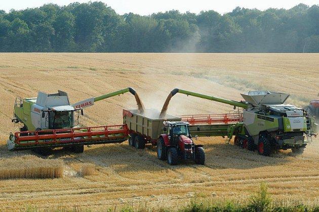 Alimentation et climat, le Giec montre les choix à faire