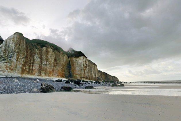 Seine-Maritime: le chien tombe de la falaise