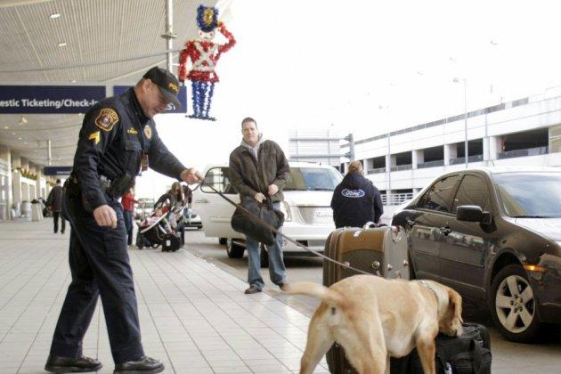 Un homme détenu 82 jours pour avoir ramené du miel aux Etats-Unis