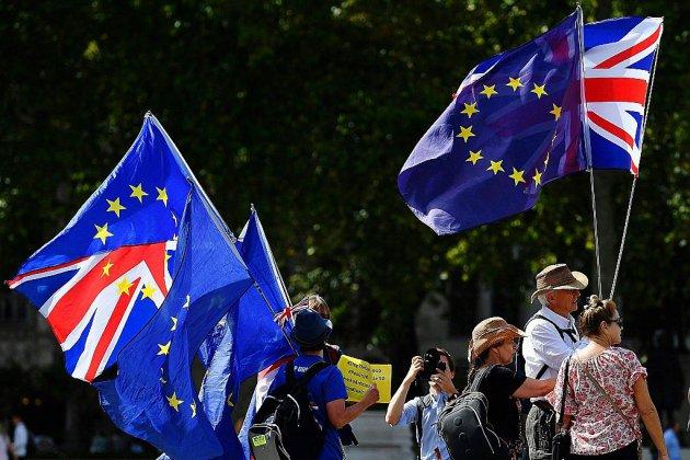 Les opposants à un Brexit dur passent à l'offensive judiciaire