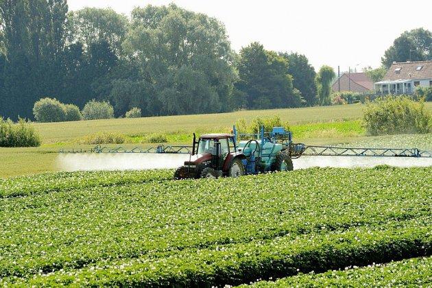 """Pesticides: le gouvernement ouvre une consultation publique, sur le modèle du """"grand débat"""""""