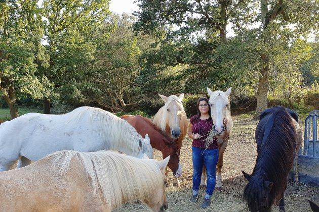 Près du Havre: le coaching par le cheval