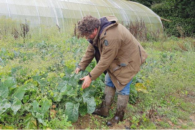 Lubrizol: quelles conséquences pour l'environnement et pour l'agriculture?