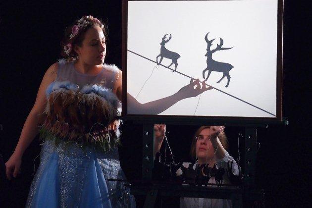 Le cerf sans bois: un conte initiatique au Théâtre à l'ouest à Rouen