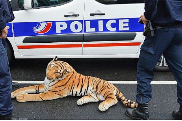 Un tigre repéré dans les rues de la ville