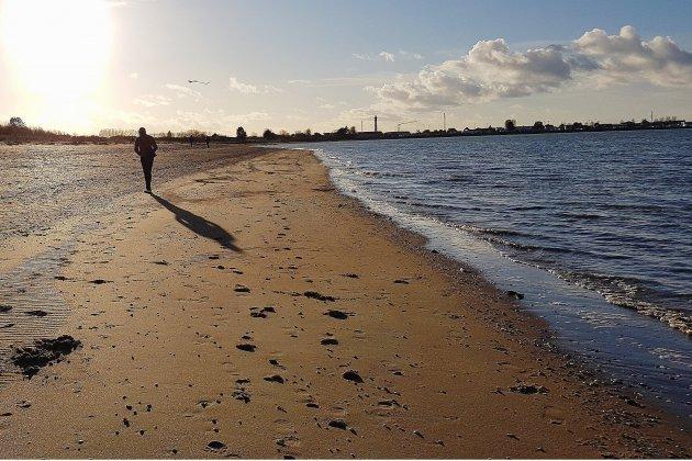 Pêche à pied interdite entre les estuaires de la Dives et de l'Orne