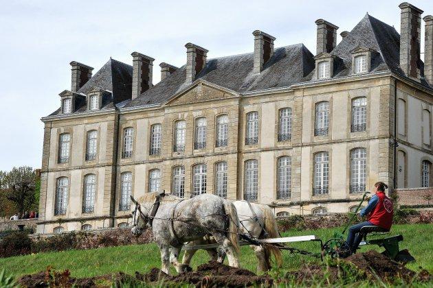 Vente aux enchères au Château
